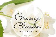 Orange Blossom Activation